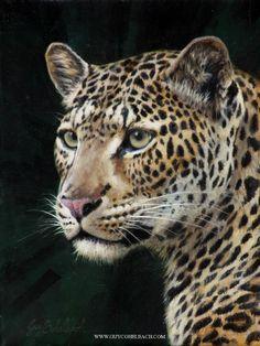 Leopard Portrait RHA 12 x 9