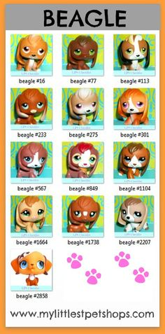 Littlest Pet Shop – Beagle Puppy Dogs.  Learn all the pet numbers for all the beagles that hasbro toys sells.  Many more pet shop lists available at http://mylittlestpetshops.com.  Repin if BEAGLES are one of your favorites!