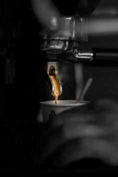 Espresso Coffee Shot, Coffee Time, Café Barista, Coffee Shop Photography, Aeropress Coffee, Café Chocolate, Fresh Roasted Coffee, Coffee Pictures, Blended Coffee