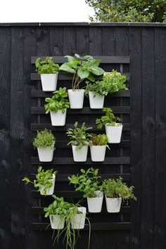 modern vertical garden IKEA hack modern vertical garden IKEA luroy bed slat hack In modern cities, it is almost impossible to sit within a house with the. Small Herb Gardens, Vertical Gardens, Outdoor Gardens, Outdoor Art, Small Garden Hacks, Vertical Planting, Ikea Outdoor, Outdoor Decor, Diy Herb Garden