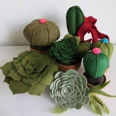 cactus en vetplantjes van vilt en dekens, ook te verwerken in bruidsboeketten | www.viltbloemist.nl