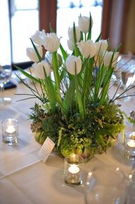 White tulips nestled in a bowl.  www.tutudivine.com