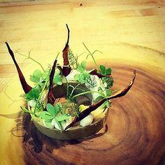 PEAR / shortbread, sorrel curd, pear skins, oak moss, sweet clover   Red Medicine Restaurant  LA