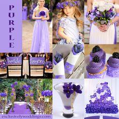 Purple Variations