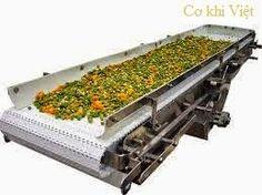 băng tải nhựa chế biến thực phẩm