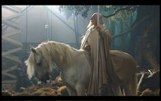 blanco Shadowfax horse | shadowfax actor blanco dead gandalf on shadowfax
