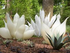 A collaboration two years in the making marks the return of Dale Chihuly's glass art to the Atlanta Botanical Garden.
