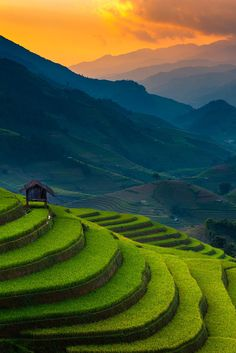 Sunset over a rice terrace at Mu Cang Chai, Vietnam