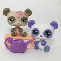 Littlest Pet Shop LPS Purple Brown Tan Panda Bear Lot of 2 | eBay