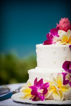 Love the color combination - Tropical wedding cake