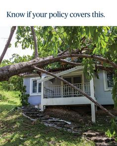 Atunci când furtunile de vară încep să se producă, veți fi bucuroși că aveți o asigurare potrivită! Cheapest Insurance, Cabin, House Styles, Plants, Home Decor, Decoration Home, Room Decor, Cabins, Cottage