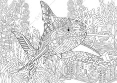 Adult Coloring Page Shark and Treasure by ColoringPageExpress