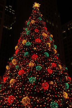 The big Chicago Christmas tree.../