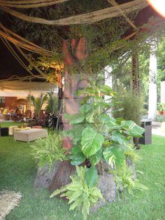 Decoración de Fiesta con motivo de Selva