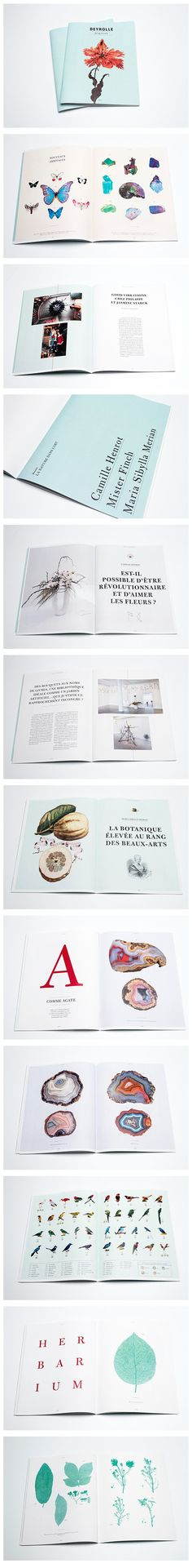 Layout design / Deyrolle magazine on Behance Layout Print, Book Design Layout, Book Layouts, Typography Layout, Graphic Design Typography, Graphic Design Illustration, Design Editorial, Editorial Layout, Cv Inspiration