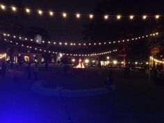 Big Barton, Art on Fire at Dixon Gallery and Gardens, Memphis, TN. 10/26/2013