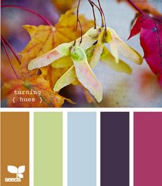Umm, autumn anyone? I want to quit everything and just design using all these beautiful colors!!