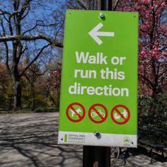 New York. Para evitar los embotellamientos de cochecitos