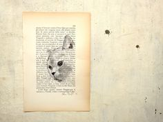 grey cat portrait on page of antique book for pet lovers original painting in  watercolors and gouche by vumap on Etsy