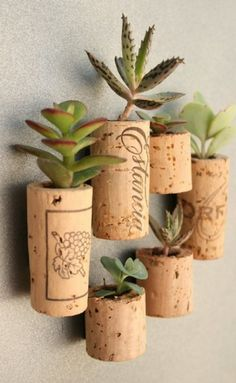 old corks to mini planters