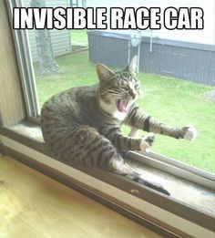 Invisible race care?  #LOL #HadToShare #MadeMeSmile #TooFunny #ItsSaturday