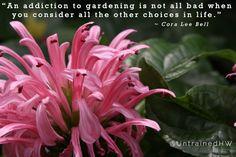 An addiction to gardening...