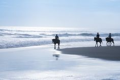 Book your beach horse ride today with Ocean Trails Equestrian Centre at the Wild Coast Sun, South Africa - Dirty Boots Beach Horseback Riding, Beach Rides, Secluded Beach, Kwazulu Natal, Family Days Out, Relaxation Techniques, Adventure Activities, Nature Reserve, Horse Riding