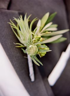 Greenery boutonniere: http://www.stylemepretty.com/virginia-weddings/charlottesville/2015/04/07/rustic-tented-wedding-at-fat-cat-farm/ | Photography: Jen Fariello - http://jenfariello.com/