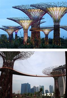 A must see place - Gardens by The Bay: Giant Man-made Supertrees in Singapore Singapore Garden, Singapore Travel, Unique Architecture, Landscape Architecture, Landscape Elements, Grid Design, Design Art, Gardens By The Bay, Amazing Buildings