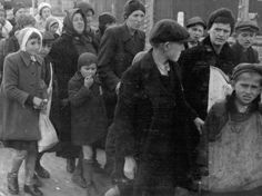 Birkenau, Poland, May 1944, Women and children on their way to gas chamber no. 4.