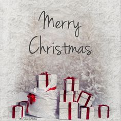 Merry Christmas to all my lovely friends here at TOC!  Blessings and joy!  ❧Toni