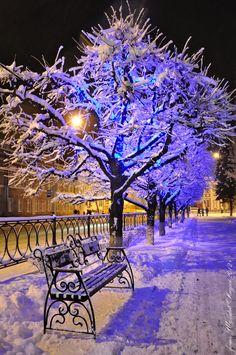 Parque à noite no inverno ❄ Winter park at night # Lua # Neve # Moon # Snow