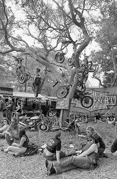Cómics caricaturas Humor bikers Harley Davidson México Motorcycle HD de Harley Davidson, y otras mas! ❤️ Women Riding Motorcycles ❤️ Girls on Bikes ❤️ Biker Babes ❤️ ma Riders ❤️ Mans who ride rock ❤️TinkerTailorCo ❤️ Motos Harley, Harley Fatboy, Sweat Lodge, Retro, Hells Angels, Fallen Angels, Motorcycle Art, Motorcycle License, Vintage Motorcycles