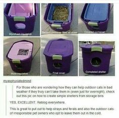 I have multiple strays in my backyard, and I can verify this works, as we (My fam) do(es) this!!!!