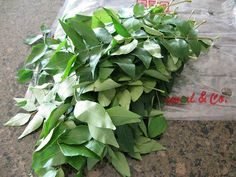 Curry leaves are an herb native to South Asia, unrelated to the ground spice mix called curry powder. They're an essential component of South Indian cooking, adding a subtle aroma Stop Grey Hair, Prevent Grey Hair, Gray Hair, Grey Hair Treatment, Helichrysum Italicum, Best Hair Oil, Grey Beards, Hair Remedies, Natural Remedies
