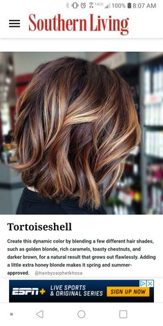 Fall Hair Color For Brunettes, Fall Hair Colors, Brown Hair Colors, Brown Hair With Caramel Highlights, Hair Color Highlights, Hair Colour, Tortoise Shell Hair, Brunette Color, Brunette Hair