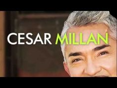 Cesar Millan's 'Leader of the Pack'