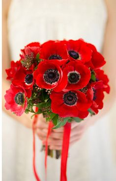 Red Anemone Bouquet