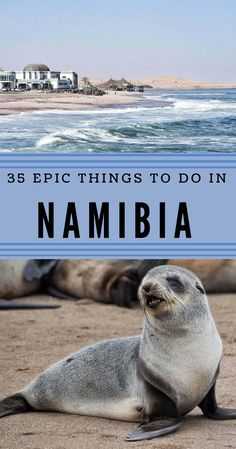 35 Simply Unmissable Things To Do In Namibia - 35 Simply Unmissable Things To Do In Namibia Namibia is a fabulous place to visit, and there are many things to do there. Traveling around is easy. This post highlights 35 things to do in Namibia Namibia Travel, Africa Travel, Egypt Travel, Africa Destinations, Travel Destinations, Travel Advice, Travel Tips, Travel Videos, Travel Hacks