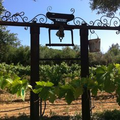 Rancho Bernardo winery Ranch Bernardo California