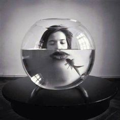 "Inventive photography, strange reflection, refraction to enlarge lips in fishbowl. Such a lovely use of framing and black and white photo. ""Only a Kiss"" by Maria Frodl. Conceptual Photography, Creative Photography, Portrait Photography, Histogram Photography, Photography Magazine, Street Photography, Contemporary Photography, Fish Eye Photography, Wedding Photography"