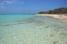 East Island Snorkeling - Puerto Rico