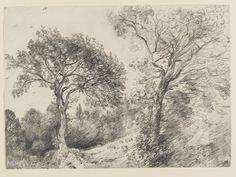 Trees in West End Fields, Hampstead John Constable