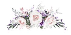 Фото, автор ✿Lili@ ✿ на Яндекс.Фотках Watercolor Rose, Watercolor Drawing, Watercolor Paintings, Pink Floral Background, Floral Border, Graduation Wallpaper, Most Beautiful Flowers, Arte Floral, Planner