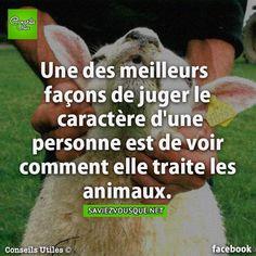 Une des meilleurs façons de juger le caractère d'une personne est de voir comment elle traite les animaux.