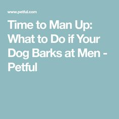 Time to Man Up: What to Do if Your Dog Barks at Men - Petful