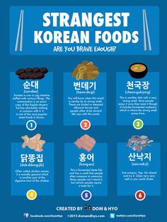 Strangest Korean Foods Are You Brave Enough?