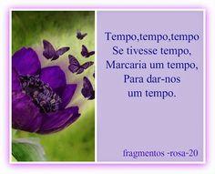 Meus Poemas  Minhas Reflexões (R.R.): N.14- Fragmento  (n.20) ( tempo, tempo......)