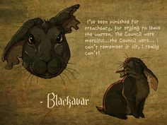 A quick Watership Down fanart, made from older pieces: Blackavar. Both version of him look different, because I made them in different times. Watership Down - Blackavar Watership Down Movie, Watership Down Quotes, Plague Dogs, Rabbit Tattoos, Rabbit Art, Bunny Rabbit, Warrior Cats, Old Movies, Watercolor Illustration