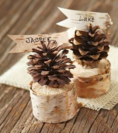 Pinecone place cards—perfect for a rustic holiday table! Details: http://www.midwestliving.com/holidays/christmas/pinecone-crafts-and-decorations/?page=16